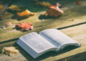 bible-1868070__340